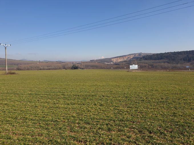 Ideálny pozemok pre Vašu firmu, Nitra