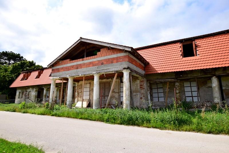 Salgočka1